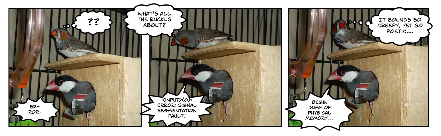 comic of two finches and a nest box