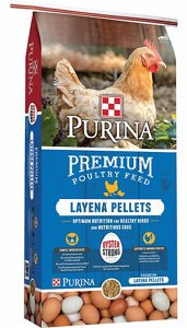 purina layena pellets poultry mash